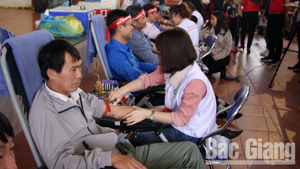 phát động, lễ hội xuân hồng, hiến máu tình nguyện, Lê Ánh Dương