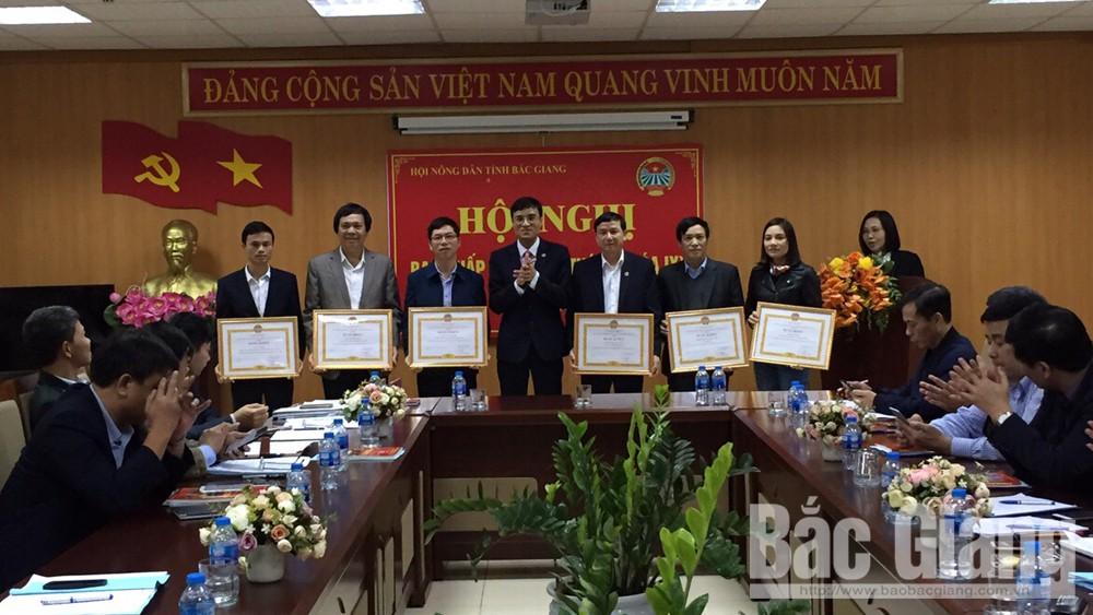 Hội Nông dân tỉnh, tổng kết năm, triển khai nhiệm vụ 2019