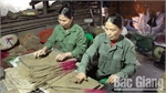 Craft villages busy preparing for Tet