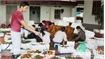 Over 15,000 tonnes of citrus fruits for Tet market