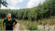 Lộc rừng Suối Đấy