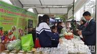 TP Bắc Giang trưng bày, giới thiệu nông sản sạch