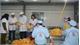 Nhân viên công ty sản xuất đồ chơi nhập viện hàng loạt sau tiệc liên hoan