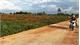 Kỷ luật hai cán bộ và một tập thể vì thiếu trách nhiệm trong quản lý  đất đai