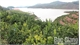 Trang trại cây ăn quả bên hồ Suối Nứa