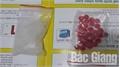 Công an huyện Việt Yên bắt quả tang đối tượng tàng trữ trái phép chất ma túy