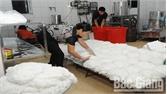 TP Bắc Giang giám sát chặt khâu sản xuất và lưu thông thực phẩm