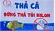 Tiễn ông Công, ông Táo về trời, chỉ thả cá không thả túi ni lông xuống sông