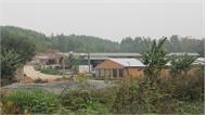 Trang trại tiền tỷ dưới chân núi Cô Tiên
