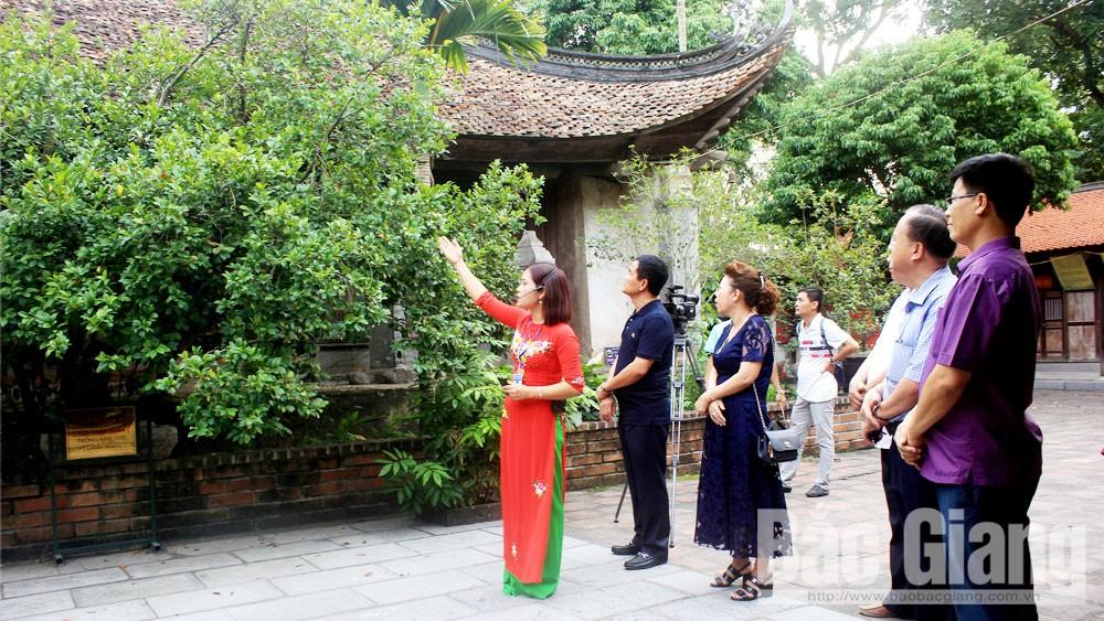 Cây nhập nhân ở chùa Vĩnh Nghiêm