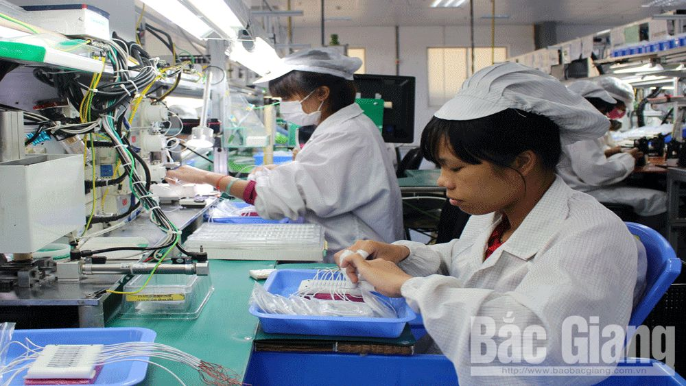 Bộ Kế hoạch và Đầu tư, Phan Đức Hiếu, Bắc Giang, Viện nghiên cứu Quản lý kinh tế T.Ư (CIEM), doanh nghiệp Bắc Giang