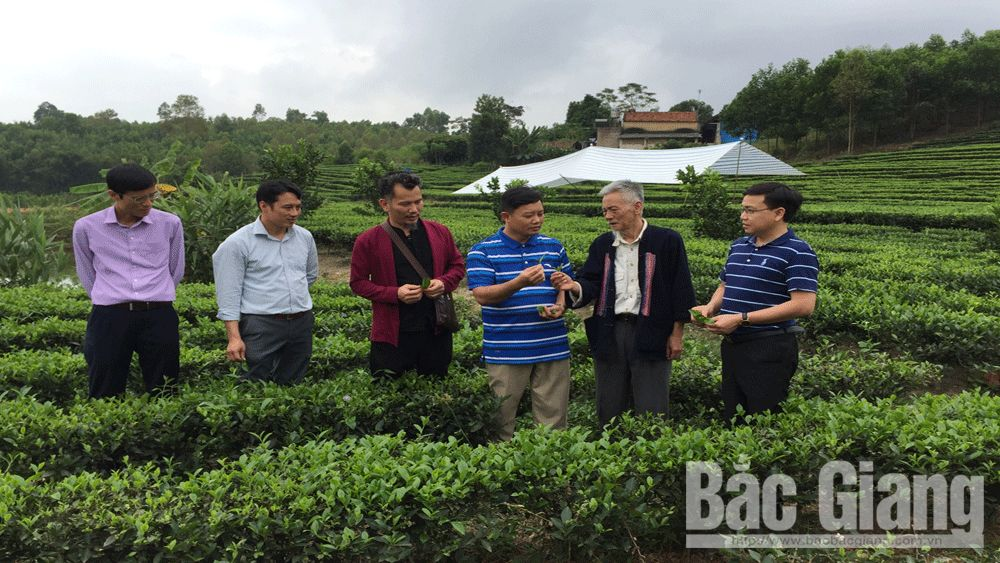 Two Bac Giang men blow village soul into native products
