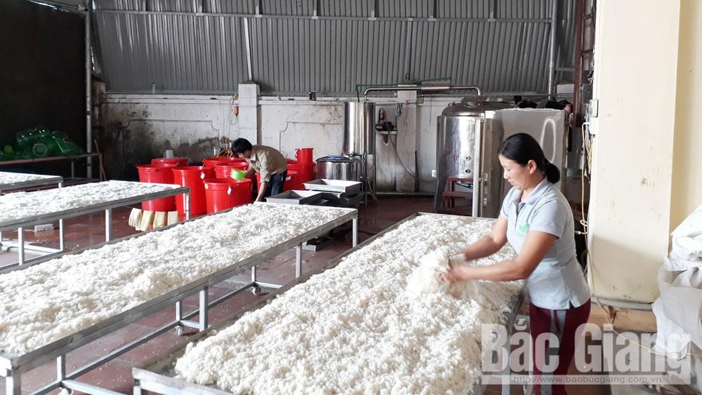 Sơn Động, Bắc Giang, mỗi xã một sản phẩm, mặt hàng đặc trưng, vùng cao
