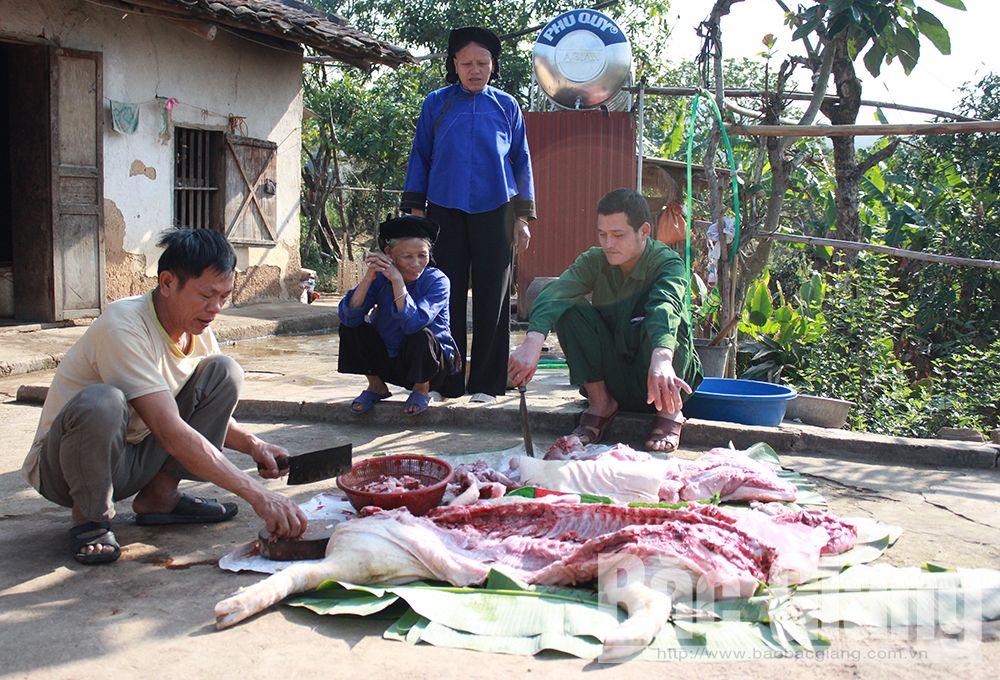 Bắc Giang, Lục Ngạn, người Nùng, Bắc Hoa, xã Tân Sơn