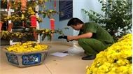 Tìm ra hung thủ vụ cướp trạm thu phí TP Hồ Chí Minh -Long Thành- Dầu Giây