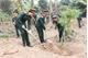 Lữ đoàn Phòng không 673 phát động Tết trồng cây