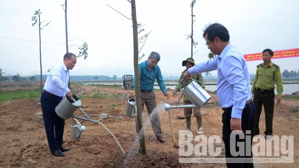 Huyện Yên Dũng, Phát động Tết trồng cây, Tết trồng cây, Xuân Kỷ Hợi