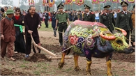 Phó Thủ tướng Thường trực Trương Hòa Bình xuống đồng trong lễ hội Tịch điền