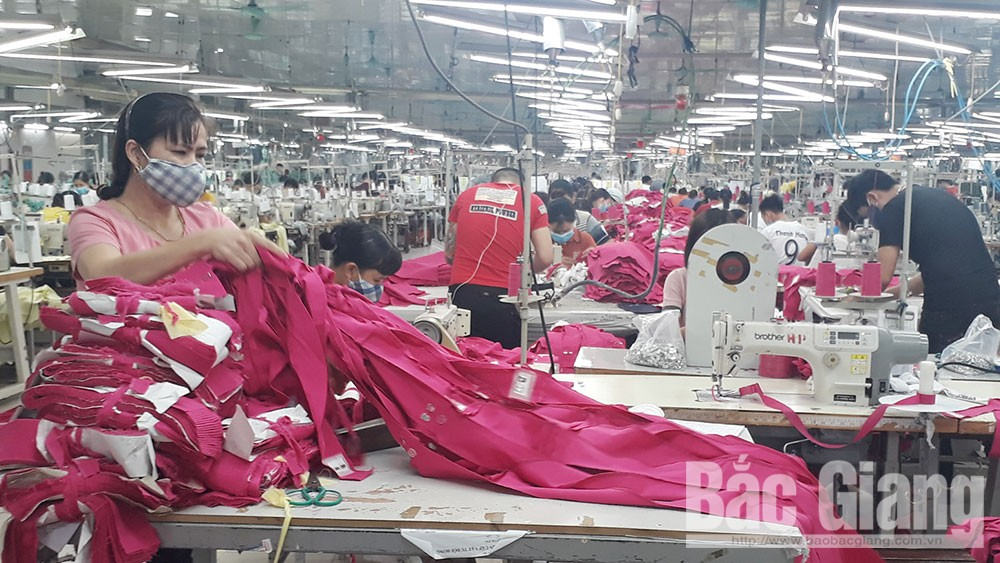 Bac Giang's enterprises hit export turnover value of over 100 million USD