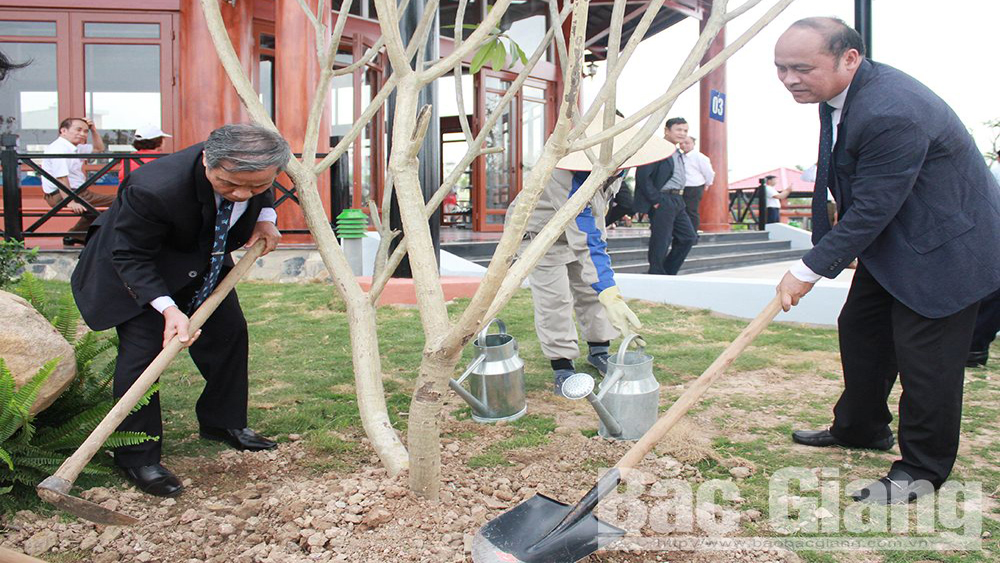 "Launching Tet tree-planting festival themed ""Forever grateful to Uncle Ho"""