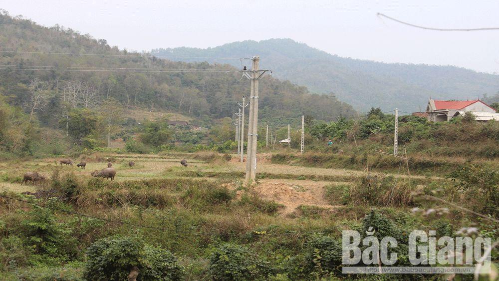 Đầu tư hạ tầng, nâng chất lượng điện nông thôn