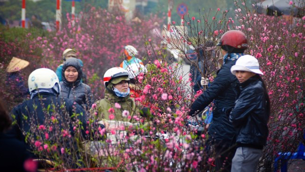Hanoi flower market, top spots, Lunar New Year celebrations, Quang Ba flower market, US' Cable News Network, most important holiday, eye-catching bouquets