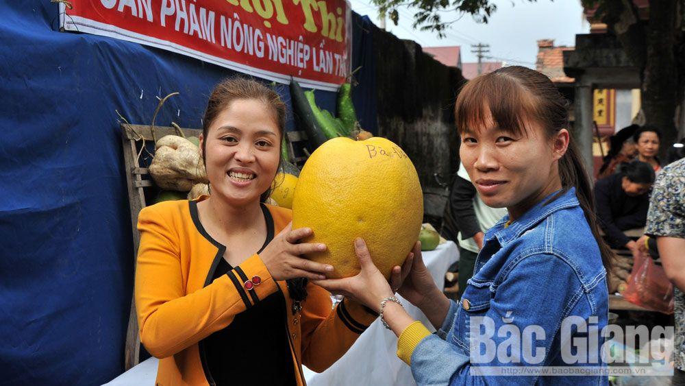Huyện Việt yên, Hội thi sản phẩm nông nghiệp
