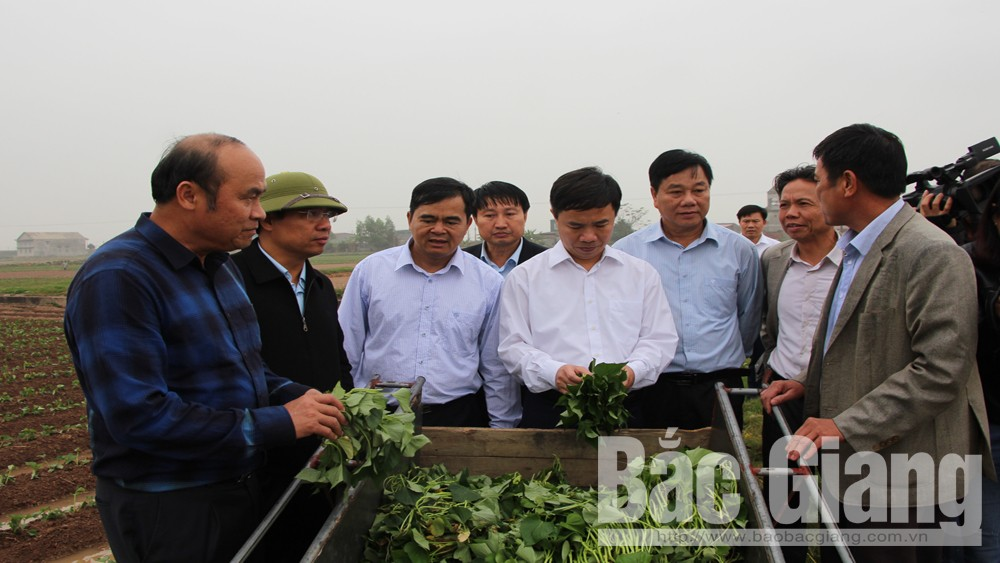 Provincial leader urges best condition for spring crop
