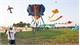 Kite festival in southern Vietnam