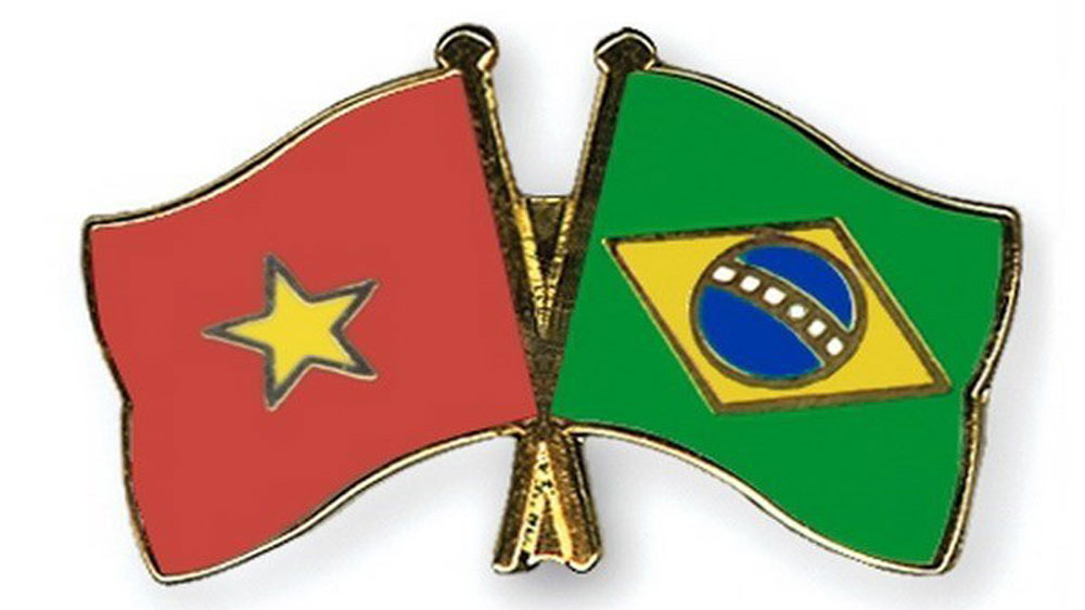 Vietnam, partnership, Brazil, Vietnamese Ambassador Do Ba Khoa, Vietnam's achievements,  comprehensive partnership, international organizations, bilateral trade