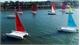Ba Ria - Vung Tau city hosts sailing race