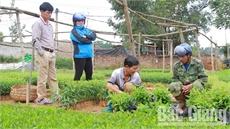 Chuẩn bị cho mùa trồng rừng mới