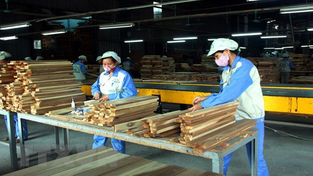 successful year, wood industry, wood products, non-wood forestry products, total investment capital, two-digit growth, wood product exports, high-risk sources, quality-based growth