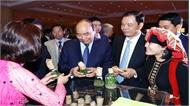 Thủ tướng Nguyễn Xuân Phúc: Kim ngạch xuất khẩu gỗ và lâm sản năm 2019 phải vượt mức 11 tỷ USD