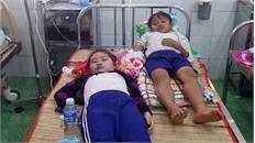Kỷ luật cán bộ sau vụ học sinh Cà Mau nhập viện khi súc miệng bằng dung dịch Fluor