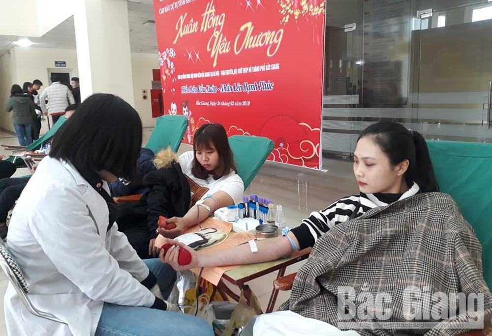 hiến máu, lễ hội xuân hồng, tình nguyện