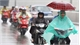 Thời tiết hôm nay (25-2): Bắc Bộ mưa rét, sáng có sương mù
