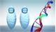 Kỹ thuật chỉnh sửa gene giúp cặp song sinh Trung Quốc thông minh hơn