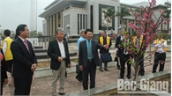 Bắc Giang tiếp nhận 100 cây hoa Anh đào do Nhật Bản trao tặng