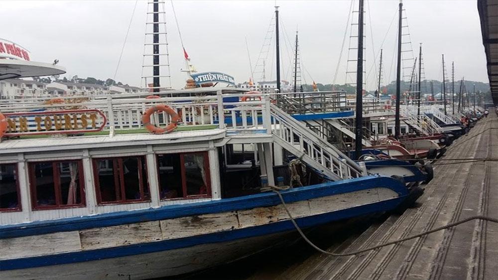 Một du khách Nhật ngã xuống nước, tử vong tại cảng Tuần Châu