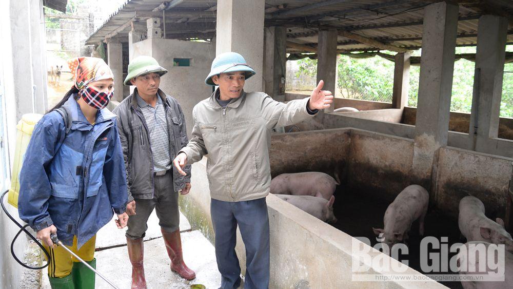 Cán bộ thú y xã Ngọc Sơn (Hiệp Hòa) hướng dẫn người dân thôn Bình Dương tiêu độc, khử trùng chuồng trại.