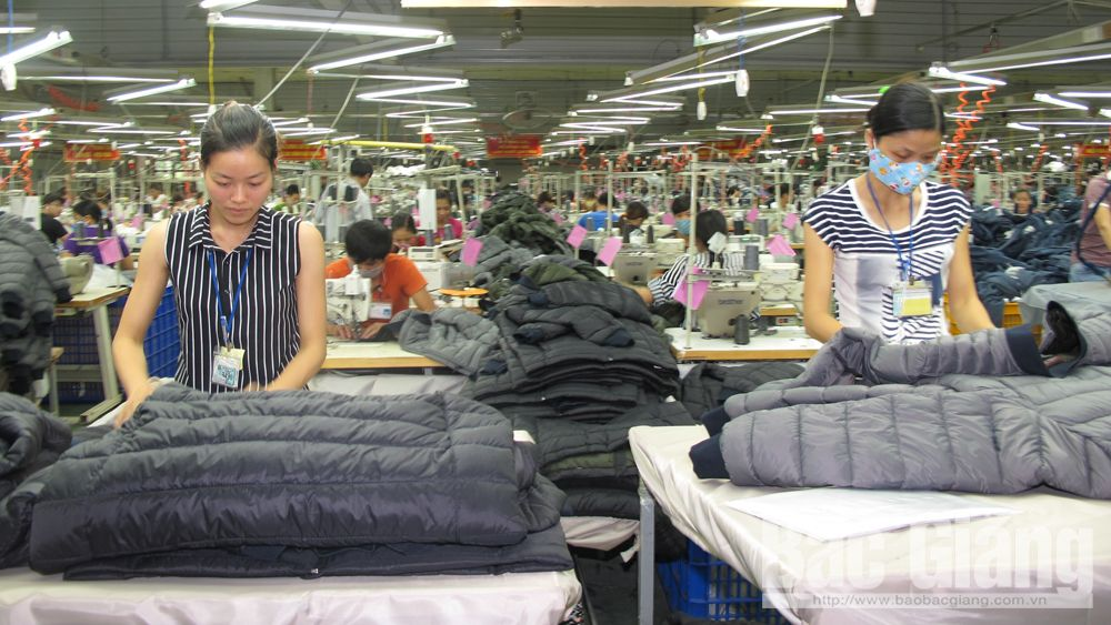 Garment export turnover, Bac Giang province, garment sector, clearance procedure, Ha Phong Export Garment Joint Stock Company, average monthly income