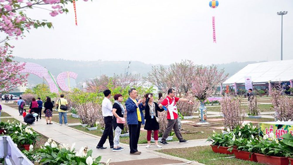 Quang Ninh province to host flower festival