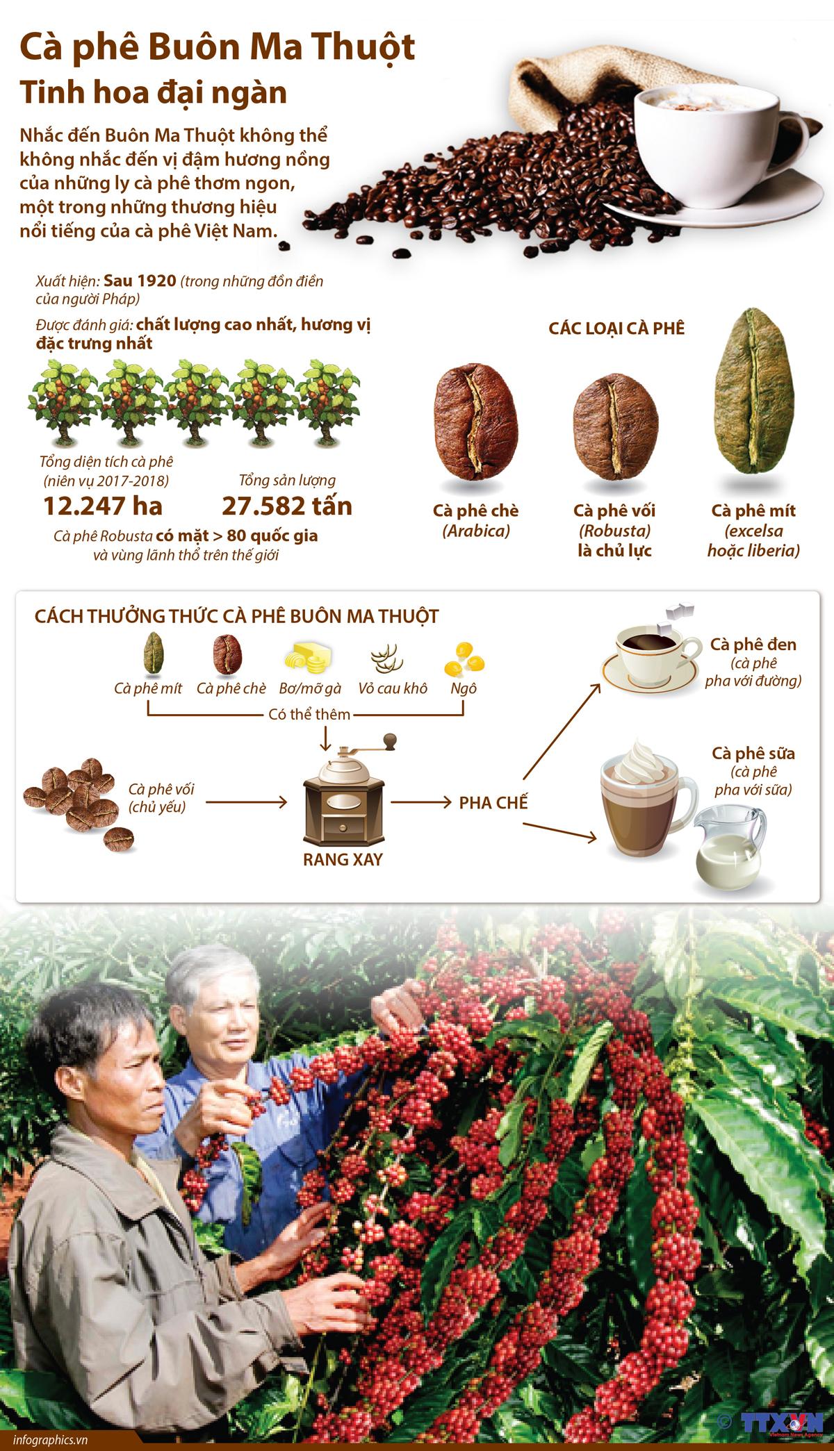 cà phê buôn ma thuột, tinh hoa đại ngàn, Đắk Lắk, thương hiệu, lễ hội