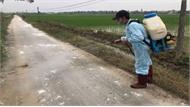 Sáng kiến mới trong chống dịch tả lợn châu Phi của Thanh Hóa 