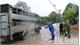Phòng bệnh dịch tả lợn châu Phi: Triển khai quyết liệt, đồng bộ các biện pháp