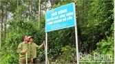 Lục Ngạn: Chi trả gần 1 tỷ đồng khoán bảo vệ rừng