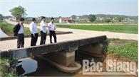 Việt Yên tích cực phòng, chống bệnh dịch tả lợn châu Phi