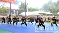 Gần 180 võ sĩ tranh tài giải võ thuật tại Lễ hội Yên Thế