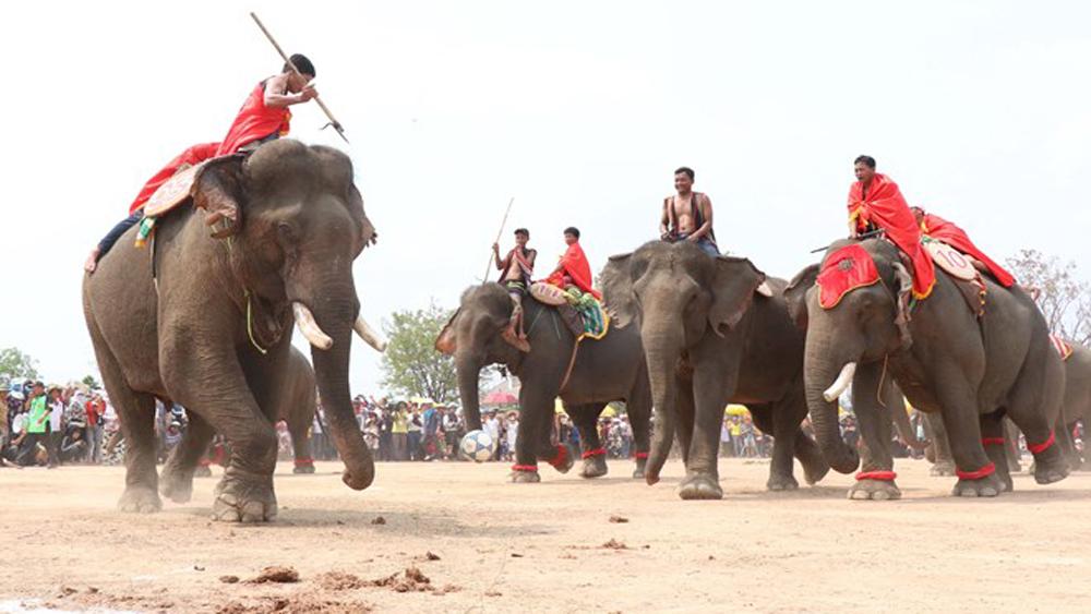 Festivals, unique culture, ethnic people, Dak Lak province, unique cultural activity, good health, gongs and dancing